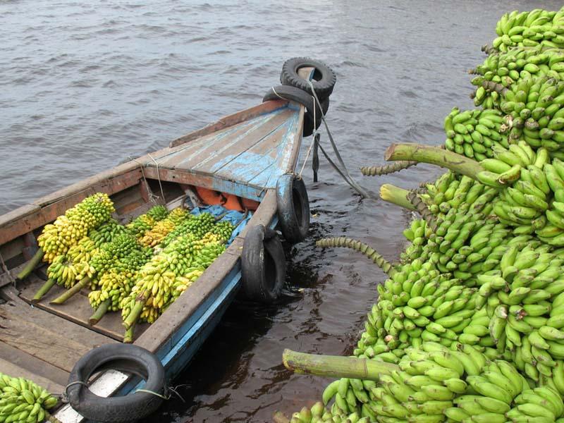 amazon river transport lesson ideas for brazil   view oddizzi u0027s brazil photo gallery  rh   oddizzi