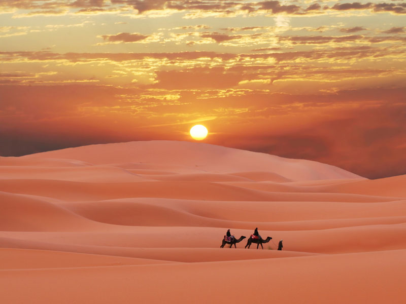 Sahara Desert For Kids