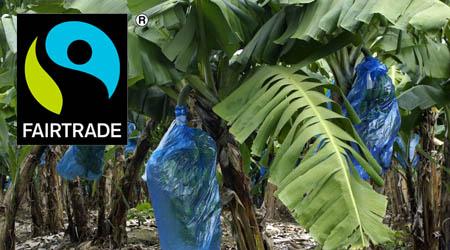 Fair Market Value >> Fairtrade