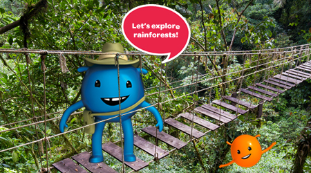 Rainforests - primary geography