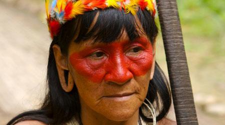 Amazon Rainforest for primary kids